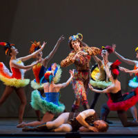 Ballet Austin presents The Magic Flute