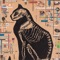 Kettle Art Gallery presents Birds, Cats, Skulls, Yeah!