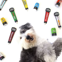 Oak Highlands Brewery presents Brewery Dog Birthday Party