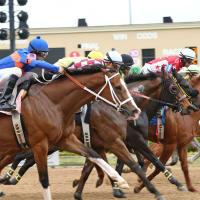 Horse racing at Lone Star Park