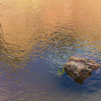 Sun to Moon Gallery presents R. P. Washburne: Photographic Performances opening reception
