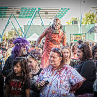 Houston Zombie Walk