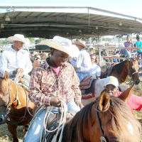 Winter Celebrations: Honoring Houston's African-American Trail Riders