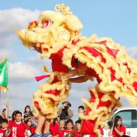 Visit Houston presents Lunar New Year