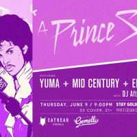 Sound Dessert Prince Salute June 2016