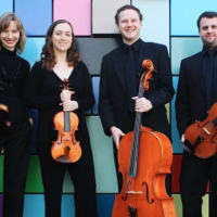 Axiom String Quartet in concert