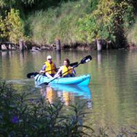 Kayak tour