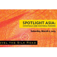 Spotlight Asia: Cocktails and Cultural Fusions 2013