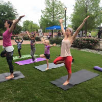 Community Yoga Austin presents COMMUNITY YOGA FEST