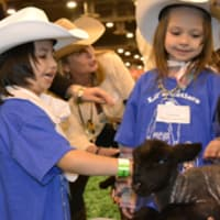 RodeoHouston 2014: Lil' Rustlers Rodeo