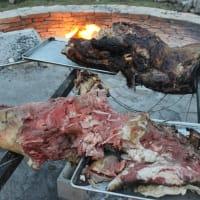 Austin Photo Set: News_Matt_live fire recap_april 2012_alamo cow