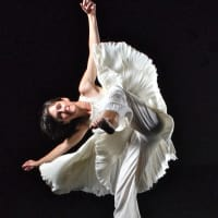 "Karen Stokes Dance presents ""Dance, Film and Conversation"""