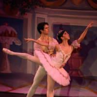 Bay Area Houston Ballet and Theatre Season Kick-off Reception