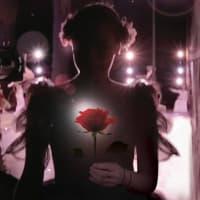 Ballet Austin_Belle Redux_Beauty and the Beast_Stephen Mills_2015