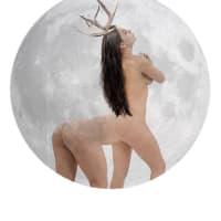 Continuum Performance Art Presents Full Buck