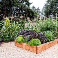 Houzz garden design 1