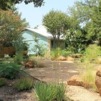 Austin Native Landscaping