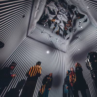 Day For Night The Infinity Room