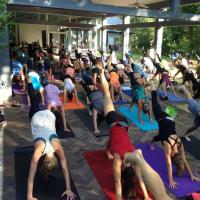 UMLAUF Sculpture Garden presents UMLAUF Free Day of Yoga