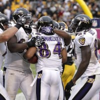 News_CulturePoll_Baltimore Ravens_winning