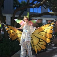 Monarch Butterfly and Pollinator Festival