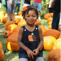 Nature Discovery Center presents Pumpkin Patch