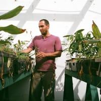MAOF Plant Nursery