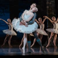 Houston Ballet presents <i>Swan Lake</i>