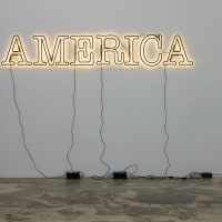 "McNay Art Museum presents ""30 Americans: Rubell Family Collection"""