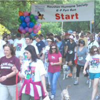 37th Annual K-9 Fun Run & Walk