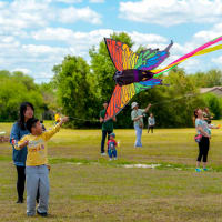 International District presents Kite Festival and Farmers Market