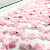 """""""The Pink Bow Project"""" opening reception"""