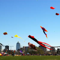 Austin Photo: Places_Outdoors_Zilker Park_Kite Festival