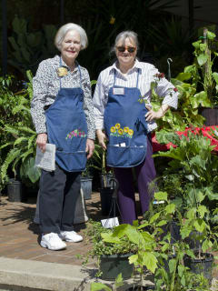 Friends of Spring Branch Memorial Library presents Plant and Book Festival