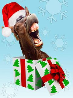 Horse Head Theatre Company presents The Jew Who Loves Christmas
