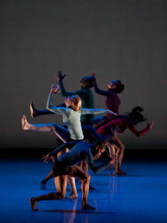 METdance presents Honored Guests