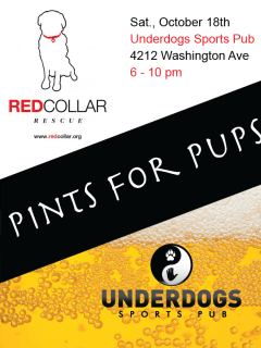 """Pints for Pups"" benefiting Red Collar Rescue"