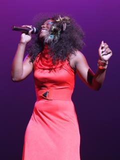 """""""Dancin' in the Street... Motown & More Revue"""" at Miller Outdoor Theatre"""