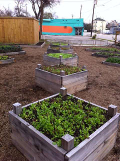 "Edible Earth Resources Class: ""Build-A-Bed: How to build a raised vegetable garden from scratch"""