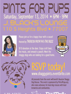 """""""Pints for Pups"""" benefiting Houston Shaggy Dog"""