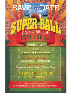 2015 Super Ball Gala benefiting Camp For All
