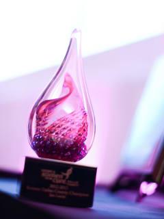 Komen Dallas County Impact Awards