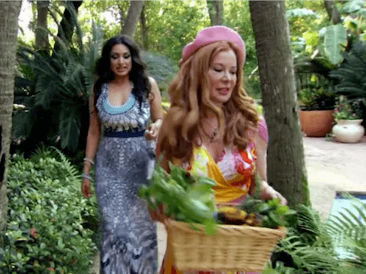 Married to Medicine Houston episode 4 recap Cindi Rose Monica gardening
