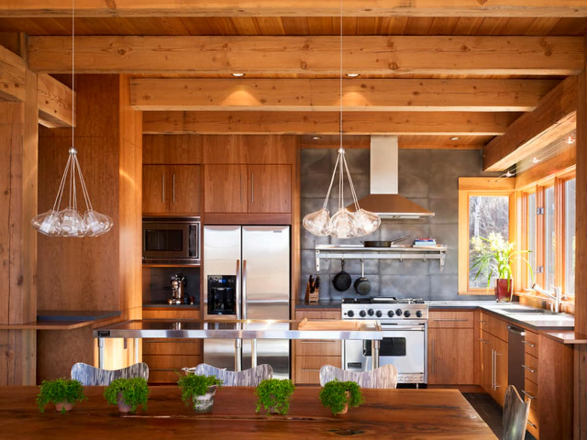 Houzz modern cabin design