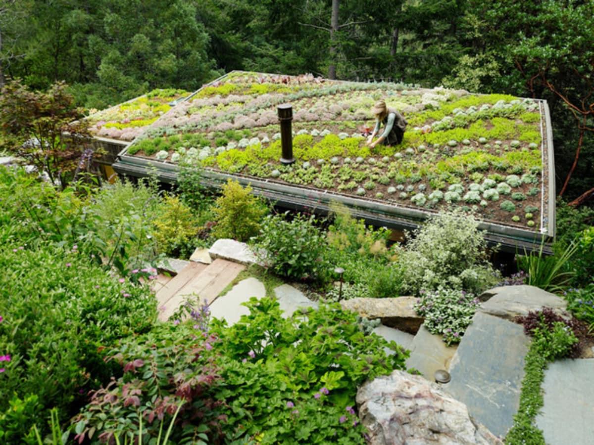 Houzz garden design 2