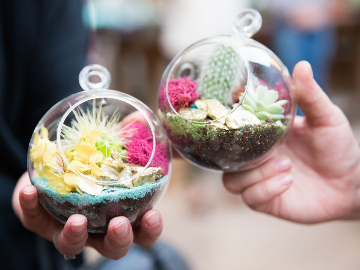 Jade & Clover mini terrariums