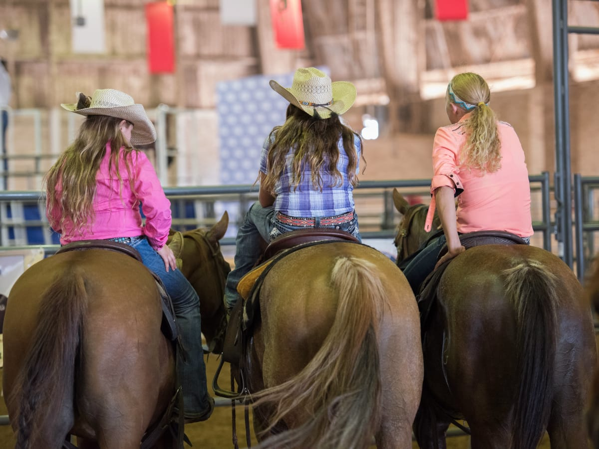 State Fair horse showing