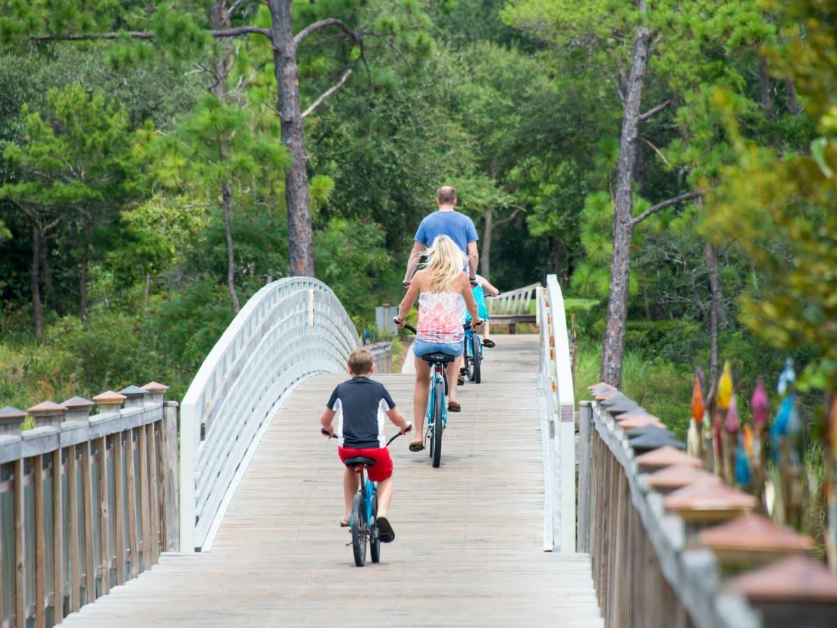 Recreation Bikes