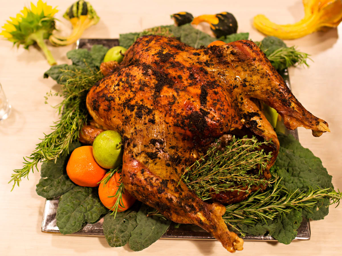 Phoenicia turkey