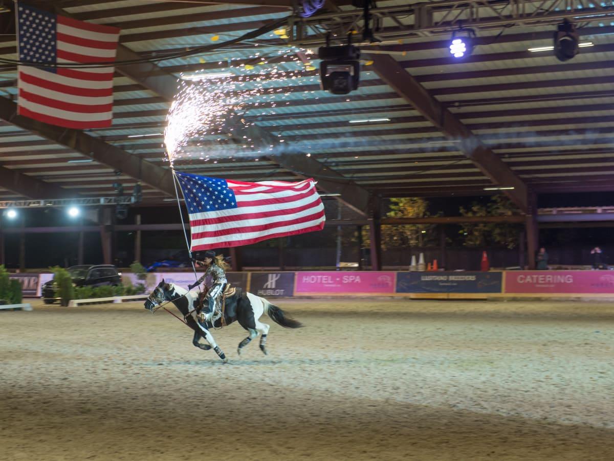 News, Shelby, Haras Cup, Nov. 2015, horse